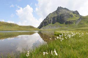 (c) Montafon Tourismus GmbH, Patrick Saely