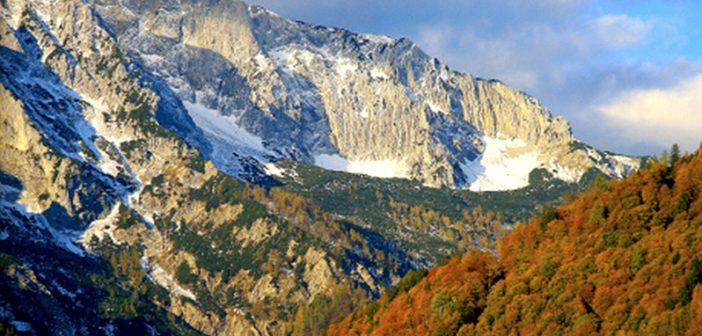 (c) Nationalpark Kalkalpen/ Mayrhofer